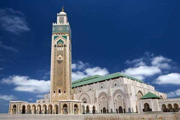 Photo of إغلاق المساجد مؤقتا بالنسبة للصلوات الخمس وصلاة الجمعة ابتداء من يوم الاثنين 16 مارس 2020