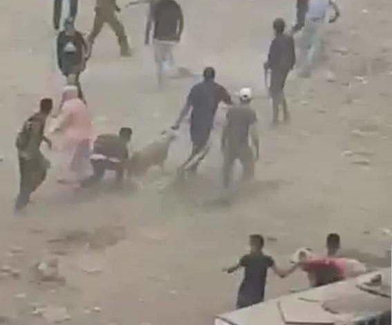 Photo of *الدار البيضاء.. ضبط 20 شخصا للاشتباه في تورطهم في أعمال العنف والسرقة والرشق بالحجارة التي شهدها سوق لبيع الأغنام* (بلاغ)